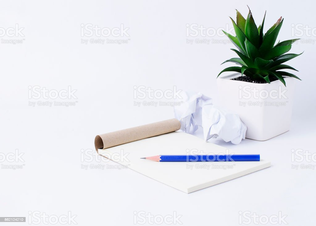 Notepad With Blue Pencil And Paper Ball And Flower Pot On White