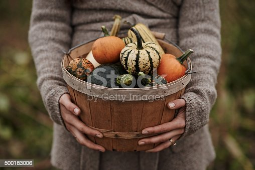 istock Nothing but good food from her garden 500183006