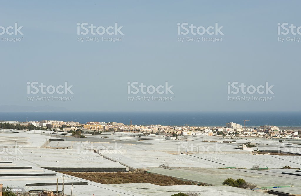 Nothing but greenhouses stock photo