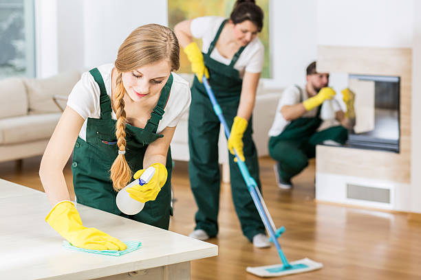 Nothing is better than team work Group of friends as a professional cleaners tiding up big apartment service occupation stock pictures, royalty-free photos & images