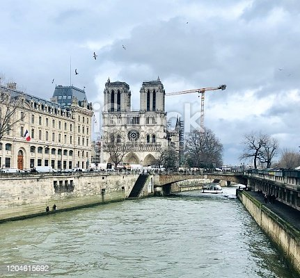 istock Notre Dame after fire, with works 1204615692