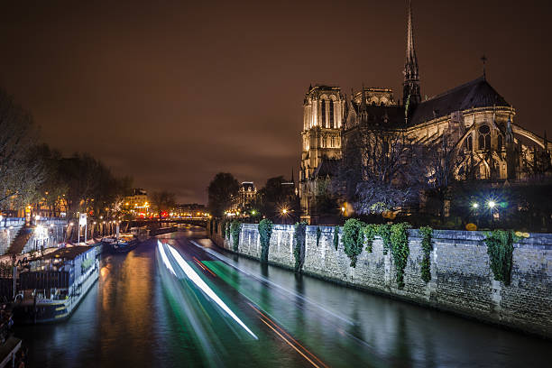 notre dame cathedral and city lights - nzgmw2017 stock pictures, royalty-free photos & images