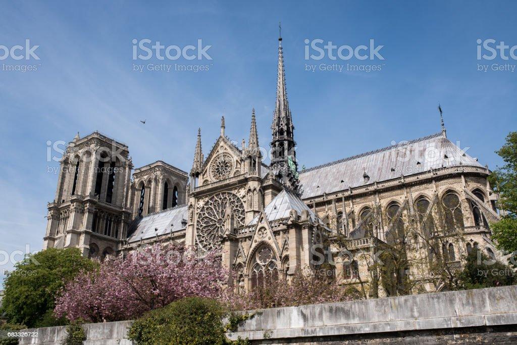 Notre Dame Cathedral from the River Seine zbiór zdjęć royalty-free