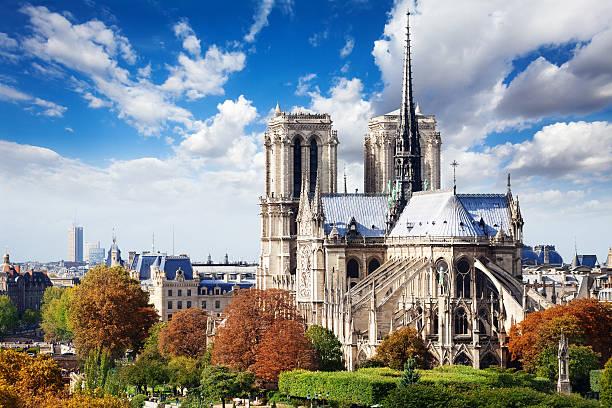 notre dame kathedrale in paris vom dach aus - kathedrale von notre dame stock-fotos und bilder