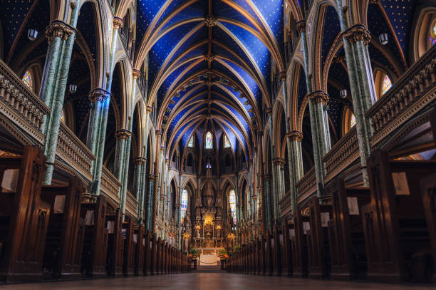 notre dame katedralen ottawa - katedral bildbanksfoton och bilder