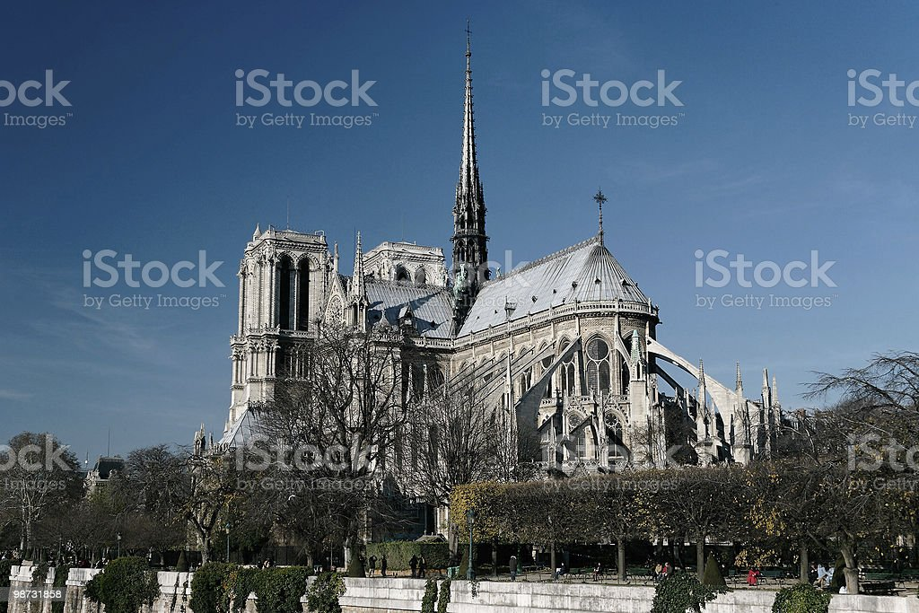 Notre Dame Cathedral royalty free stockfoto