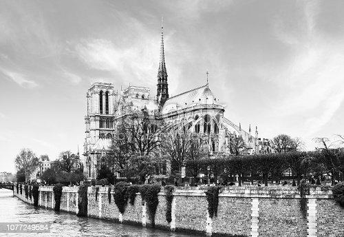 Notre Dame de Paris. Black and white.