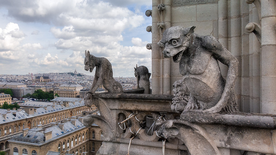 Gargoyle and wide city view from the roof of Notre Dame