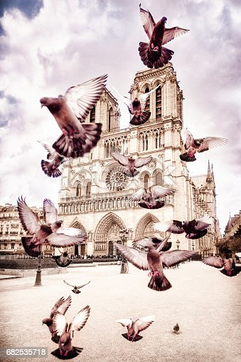 A toned image of pigeons in flight in the foreground, with Notre Dame Cathedral, in central Paris, in the background.