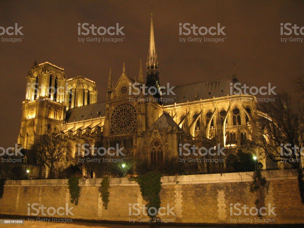 Notre Dame de Paris royalty free stockfoto
