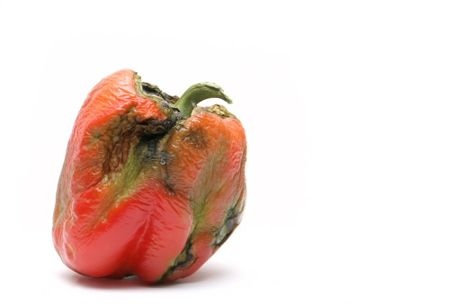 rotting bell pepper - took a couple of weeks to get this shot, hehe... isolated macro over white