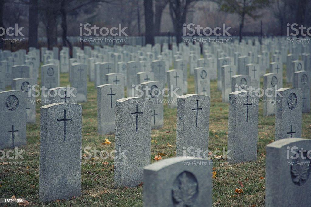 november 11, 2013 - Remembrance Day royalty-free stock photo
