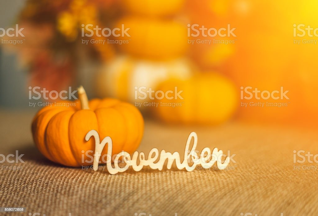 November sign with ripe pumpkins on the textile background