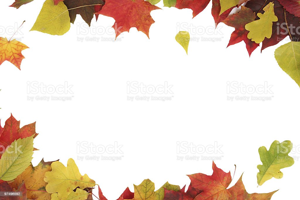 november royalty-free stock photo