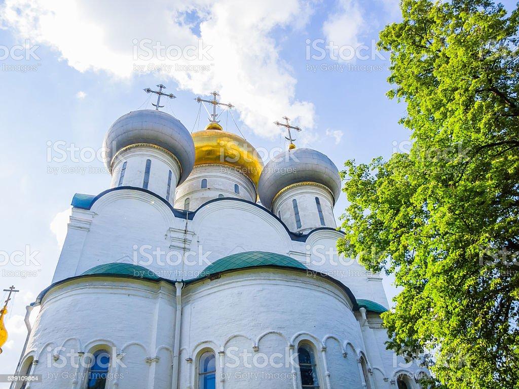 Новодевичий монастырь. Смоленский собор. стоковое фото