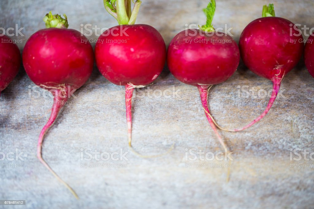 nRadish in a row, wooden background royalty-free stock photo