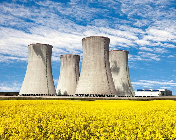 nuclear power plant dukovany with golden glowering field of rapeseed - nuclear power station stock photos and pictures