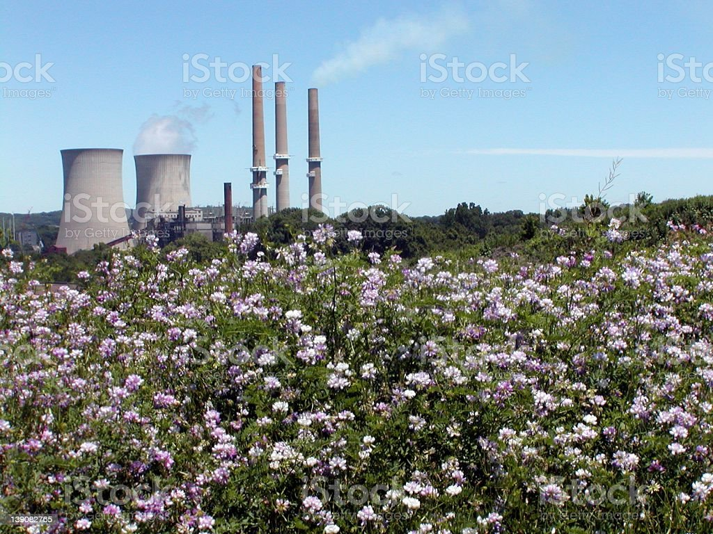 Nuclear Power Plant, Flowers in foreground, Belevdere, NJ royalty-free stock photo