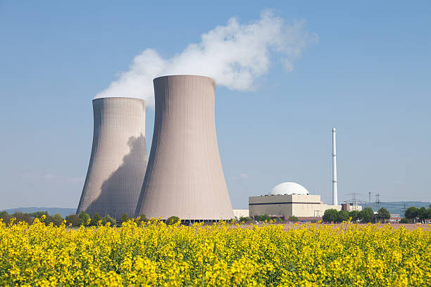 Nuclear power station with steaming cooling towers and canola field Nuclear power station with steaming cooling towers and blooming canola field. Location: Lower Saxony, Germany. nuclear power station stock pictures, royalty-free photos & images