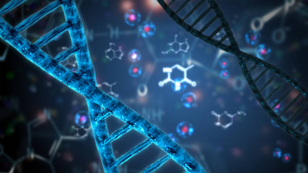nucleic acid double helix dna stock photo