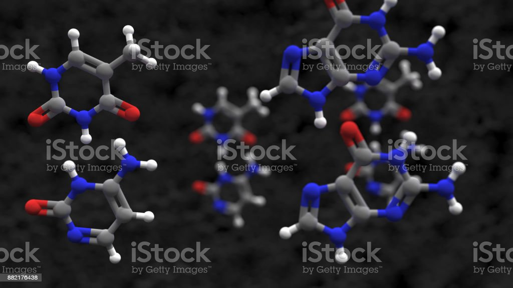 Nucleobases in the nucleic acid of DNA or RNA stock photo