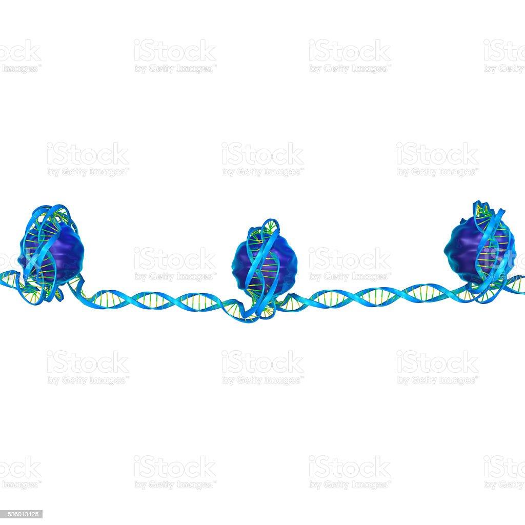 Nucleosome stock photo