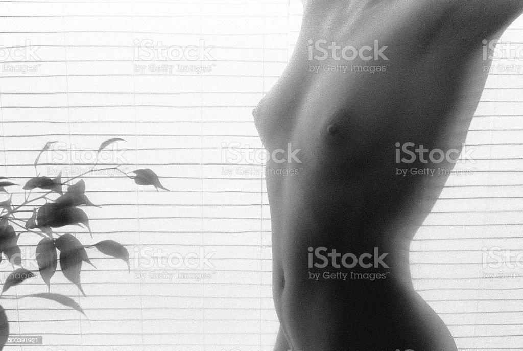 585e187cb9f5c2 Nude kobieta ciało w przód biały ekran japoński zbiór zdjęć royalty-free