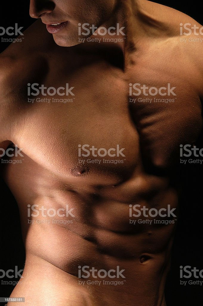 nude male torso royalty-free stock photo
