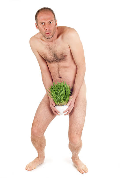 nude man and grass stock photo