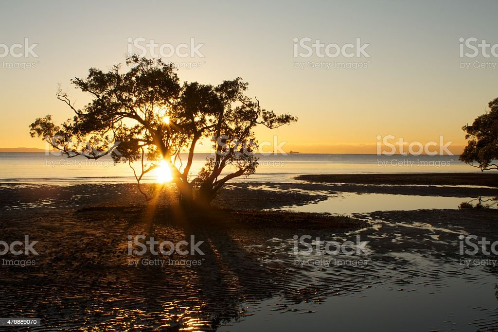 Nudgee Beach Sunrise stock photo