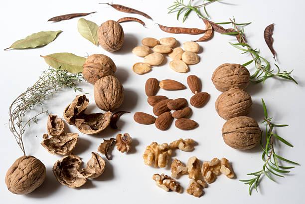 nueces, almendras y hierbas stock photo