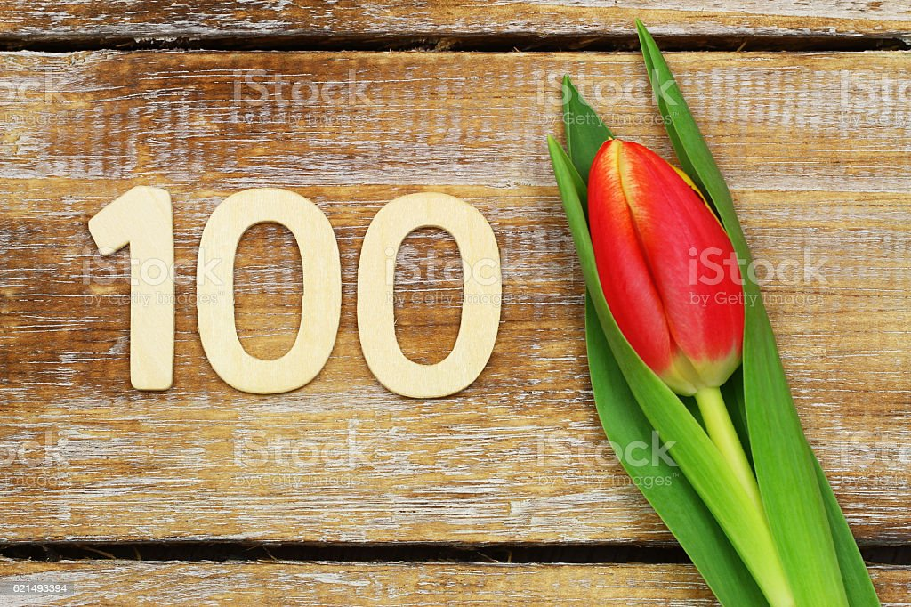 Number 100 written with wooden letters and red, yellow tulip photo libre de droits
