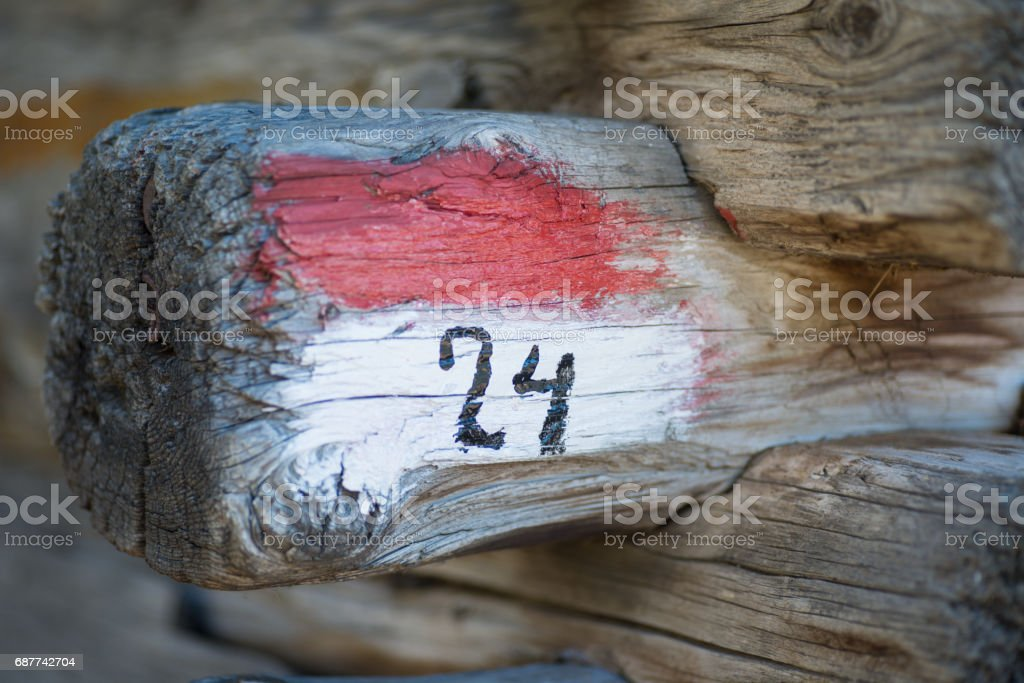 Number 24 written on wood stock photo