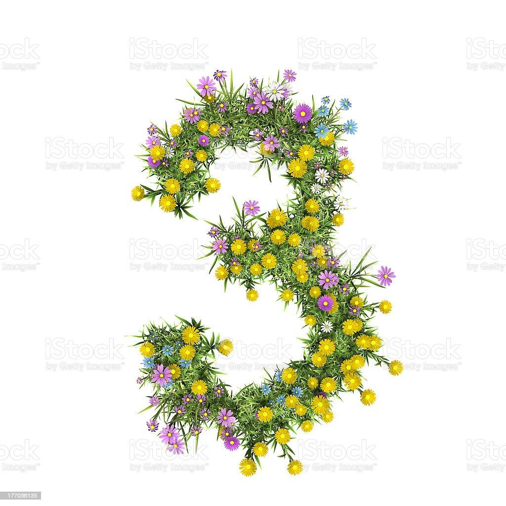Number 3, flower alphabet isolated on white royalty-free stock photo