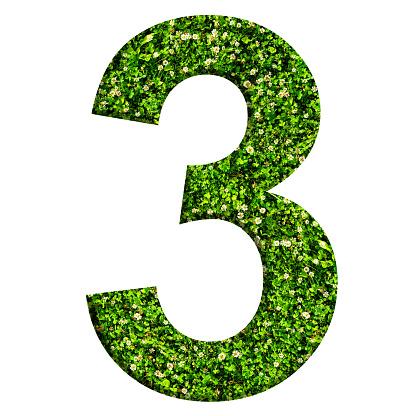 Número 3 Hecho De Césped Verde Y Tréboles Número Aislado ...