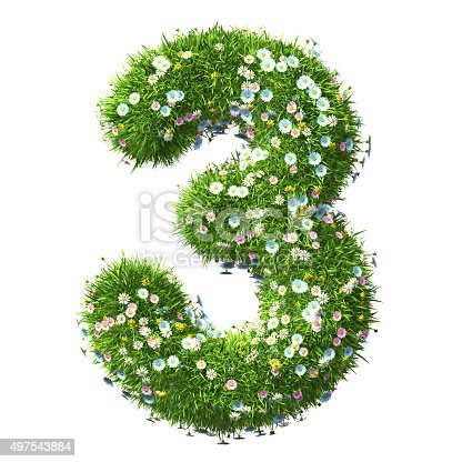 istock Number 3 Of Grass And Flower 497543884