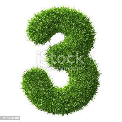 istock Number 3 of Grass 497441680
