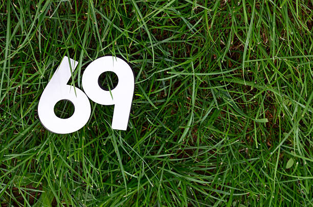 number 69 on a green grass background - number 69 stock photos and pictures