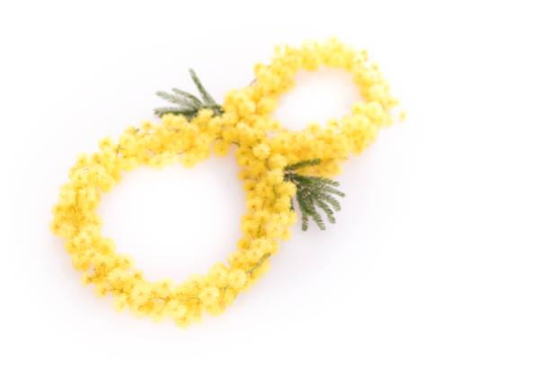 number 8 from mimosa - immagini mimosa 8 marzo foto e immagini stock