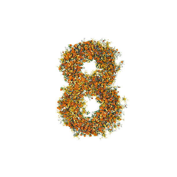 Number 8 of Flowers and Grass on White Background stock photo