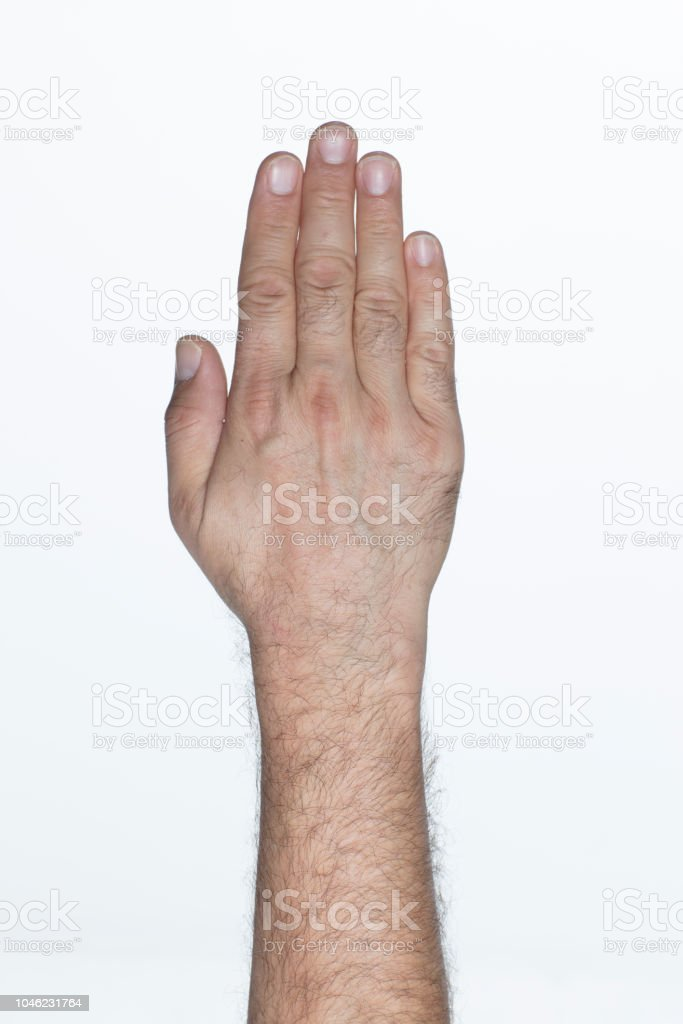 Número cinco en lenguaje de signos norteamericano alfabeto - foto de stock