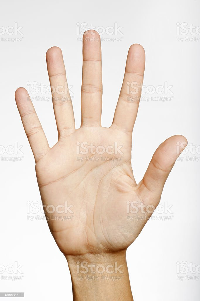 Number Five (XXXL) royalty-free stock photo