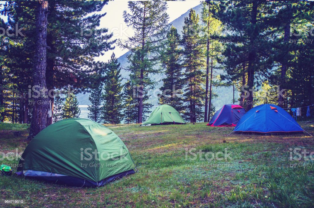 A number of tents standing on a meadow in the woods royalty-free stock photo
