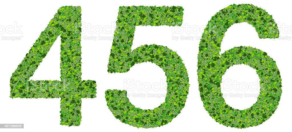 Fotografía De Número 4 5 6 Dígitos Fabricadas De Hojas Verdes Y Más
