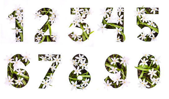 Numbers from 0 to 9 of white flowers in a paper stencil