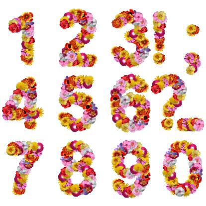 numbers of flowers
