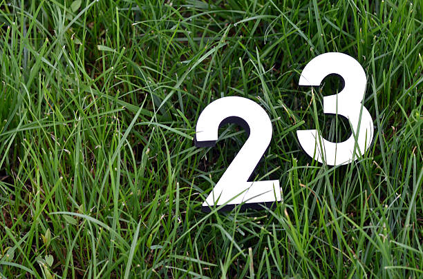 numbers on a grass - number 23 stock photos and pictures