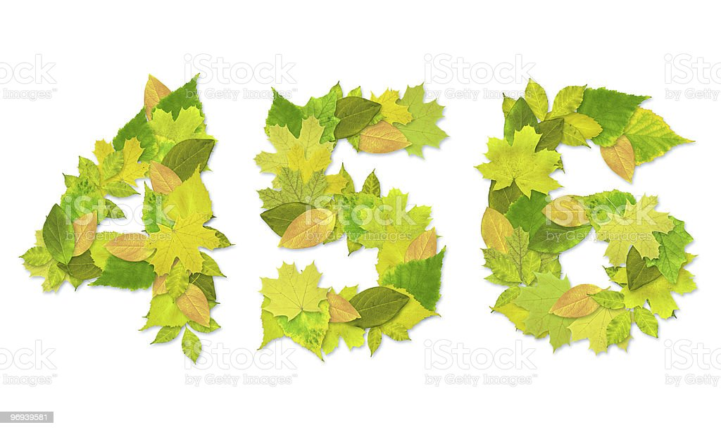 Numbers with a green leaves royalty-free stock photo