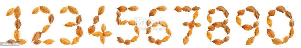845307450 istock photo Numbers with leaves: 0 to 9 184648838