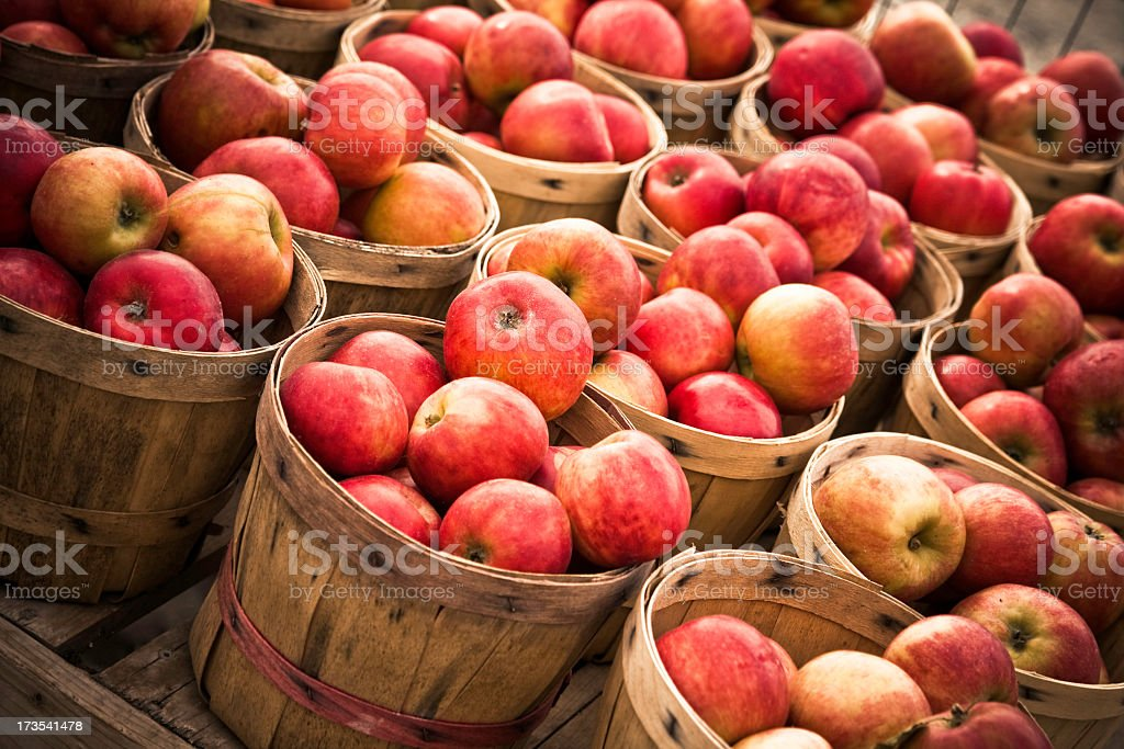 Numerous Baskets of Apples stock photo